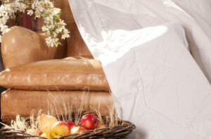 Одеяло шерстяное MERINO WOOL GRASS
