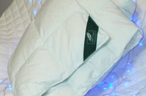 Одеяло пуховое Anna Flaum EIS (легкое)